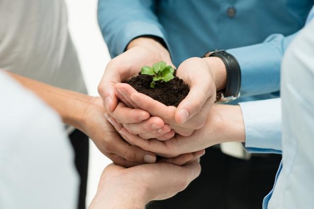Cuidar el medioambiente también es responsabilidad de las empresas